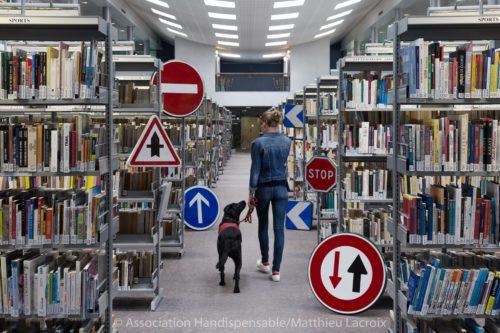 Personne malvoyante dans une bibliothèque, guidée par son chien. Photo illustrant les problèmes d'accessibilité.